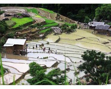 Die primitive Schönheit von der Gemeinde Xin Man, Ha Giang