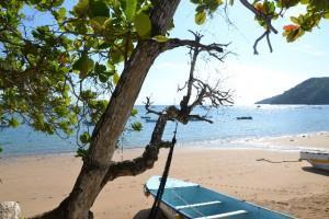 Isla Taboga – Die Blumeninsel