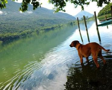 Tipps für Spaziergänge am Luganer See