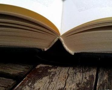Was liest du zur Zeit?