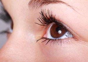 Aufbau des Auges – Schutzmechanismen