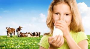 Brauchen wir Milch für gesunde Knochen?