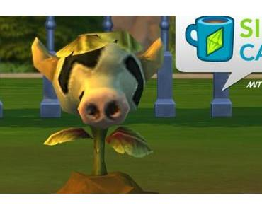 Sims-Café #4 – Wie finde ich die Kuhpflanze? Und was ist mit meinen Waden?!