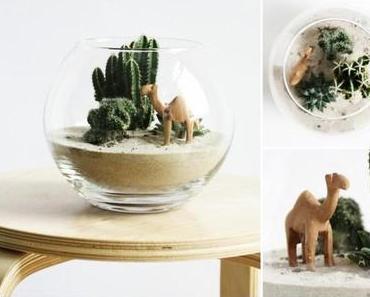 Die Miniatur-Wüste