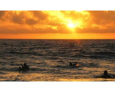 Surfen lernen auf Fuerteventura bei Planet Surfcamps