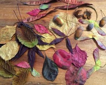 Zauberhaft schön: Hängende Herbstblätter fürs Fenster