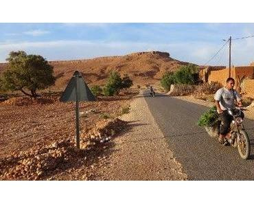 Marokko: gelbe Dünen und glühende Flossen