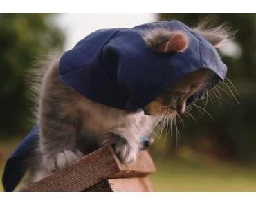 Clip des Tages: Assassin's Kittens Unity
