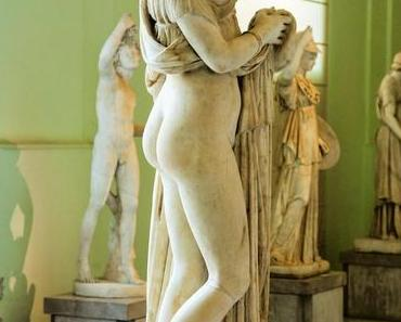 Zur Evolution des weiblichen Hinterns