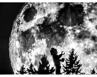 Heul-den-Mond-an-Tag – der amerikanische Howl at the Moon Day