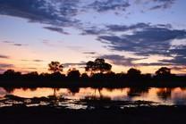 Botswana - die Reise meines (bisherigen) Lebens