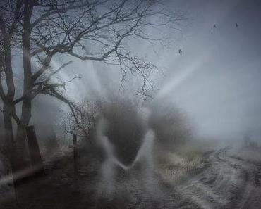 Man sieht die Hand nicht vor den Augen: Nebel ! Es wird gruselig ?