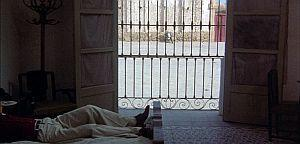 Aktion Lieblingsszene: Sieben Minuten Ewigkeit durch das Gitter der Freiheit