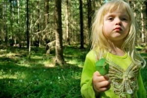 Das Leitbild der Nachhaltigen Entwicklung