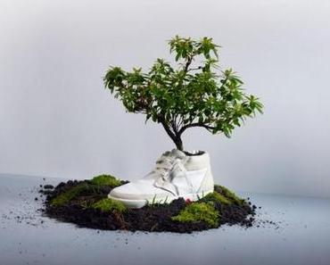 OAT shoes: Virgin collection – komplett kompostierbar!