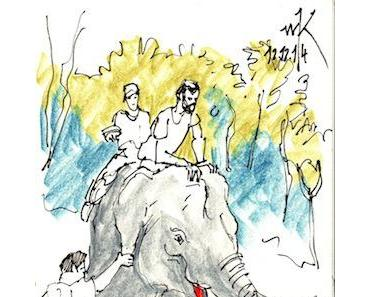 Oliver Kugler: Mit dem Elefantendoktor in Laos