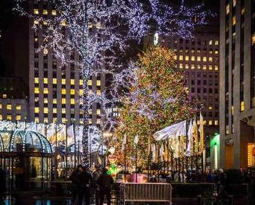 Such-einen-Weihnachtsbaum-Tag – der amerikanische Look for an Evergreen Day