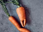 Müll Tipps weniger Lebensmittelverschwendung