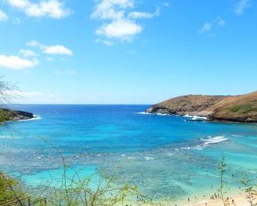 Meine Lieblingsorte auf Oahu, Hawaii