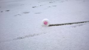 Schnee, Bernhard Langer & deutscher Golfsport!