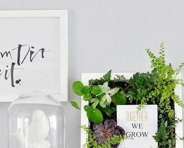 [Nachmachtipp] Bepflanzte Bilder für die Wand