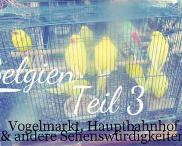 Belgien | Teil 3: Vogelmarkt am Sonntag, der Hauptbahnhof und andere Sehenswürdigkeiten ♥