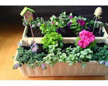 Blumenkasten für Anfänger Teil II: Jetzt wird eingepflanzt!