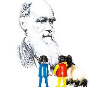 Darwin-Tag – der weltweit gefeierte Darwin Day zu Ehren des Naturwissenschaftlers Charles Darwin