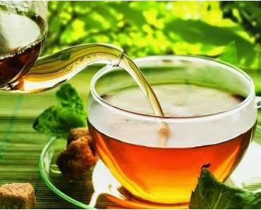 Der Alleskönner Moringa-Tee