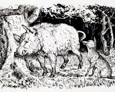 Der Eber und der Fuchs - Vorbereitung - Fabel  Aesop