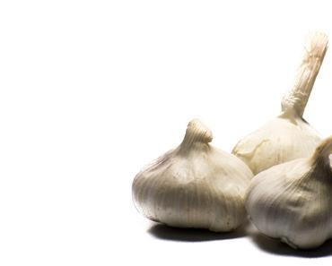 Tag des Knoblauch – der amerikanische National Garlic Day