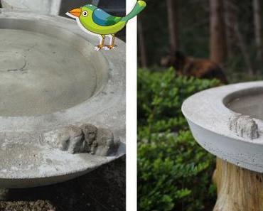 DIY – Wasser für die Vögel 🐦
