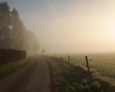 Auf den Spuren von Mystik und Natur in Belgien