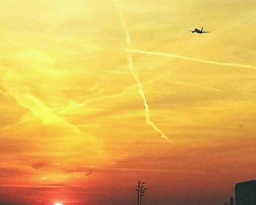 PERSONAL: Einblicke in meinen Flugbegleiterlehrgang