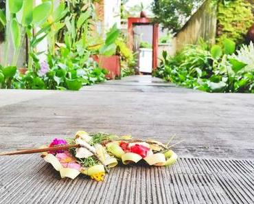 8 1/2 Gründe warum ich Bali verehre (+ 5 Gründe warum du lieber nicht kommen solltest!)