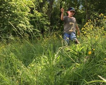 Kinder und Natur: Das gesunde Spiel im hohen Gras