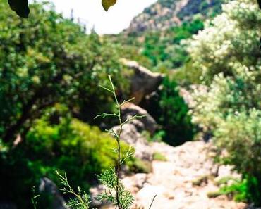 Kretische Wanderungen