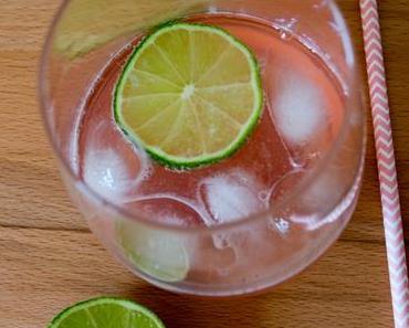 Gin & Tonic mit Rhabarber – und ein paar beschwippste Wahrheiten